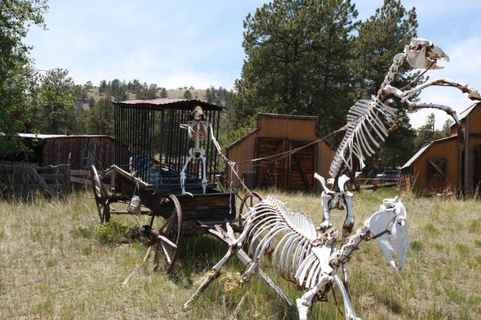 This would happen to our steeds if we didn't take care of them -- Guffey, Co.