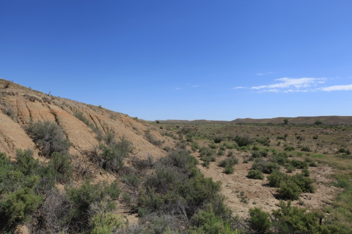 Rugged arid landscape. --East of Boone, CO