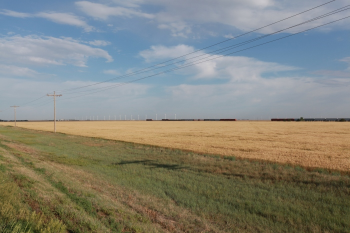 Fields in Kansas. The scale here is crazy. That's a train and a field of windmills in the background. Those windmills are enormous.