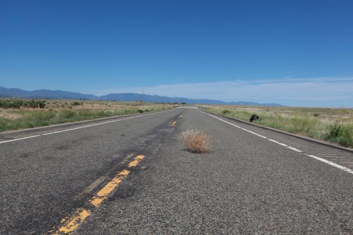 Tumbleweed --Pueblo,CO