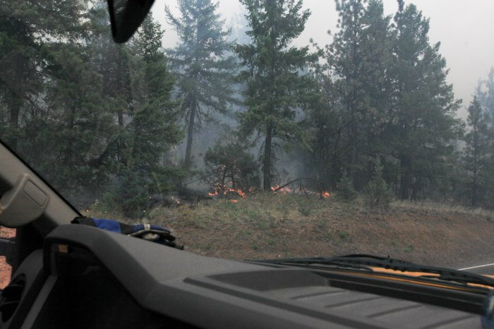 Shit is getting real. --Ochoco Pass, OR.