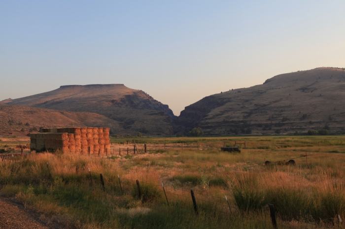 Approaching Picture Canyon in the sunrise. --Dayville,OR.