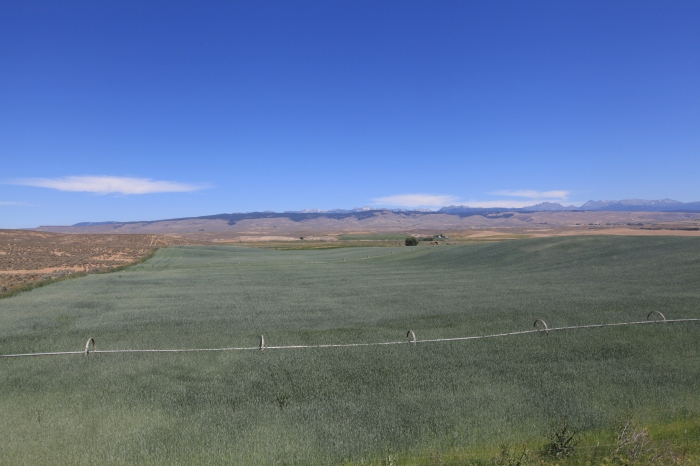 The only green patch between Richland, OR and Baker City, OR