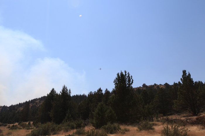 To get a sense of scale of the smoke plume: the plane in this picture is a massive four engine monster that drops flame retardant powder. --Ochoco Pass, OR.