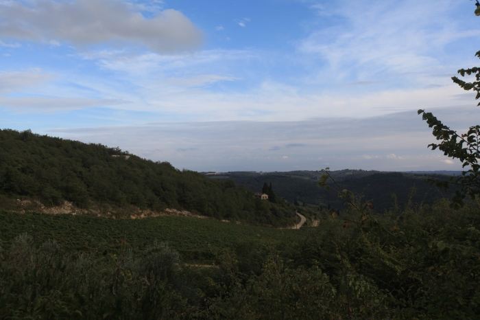 First view of the Chianti landscape